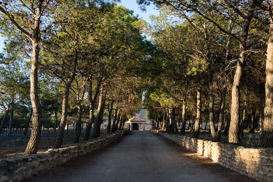 Virgen de Lagunas de Cariñena