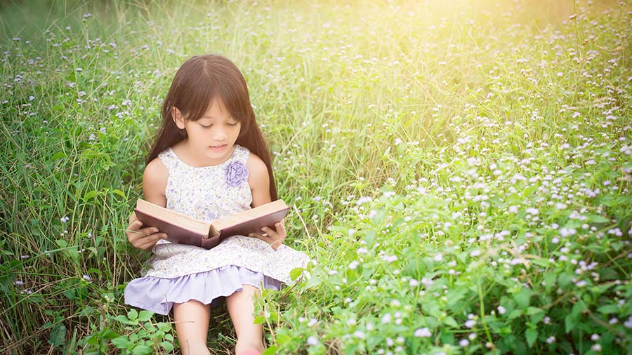 Leyendo bajo el sol